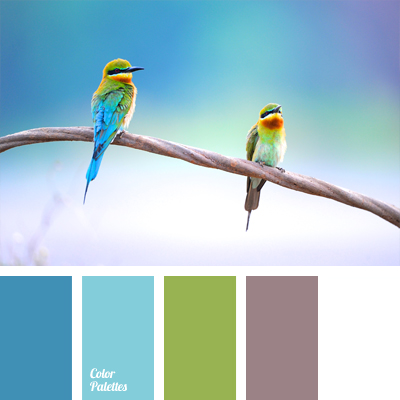 Color Of Exotic Birds Color Palette Ideas