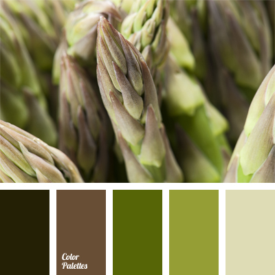 Colour Of Asparagus Color Palette Ideas
