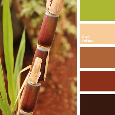 Blue Home Paint Scheme