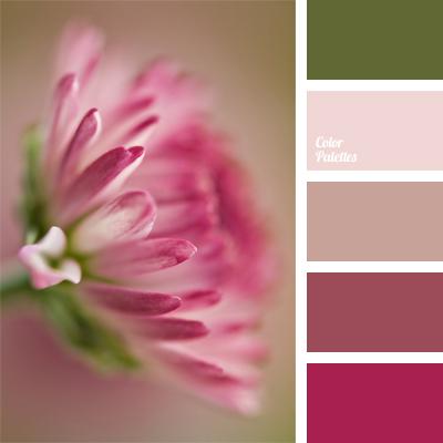 Color Palette 922
