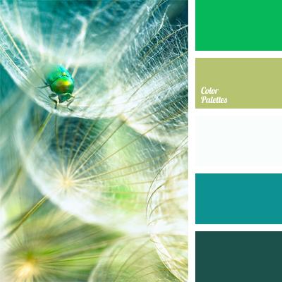Bright Jade Colour