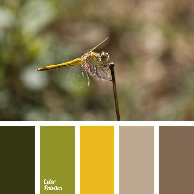 Colours Of A Dragonfly Color Palette Ideas