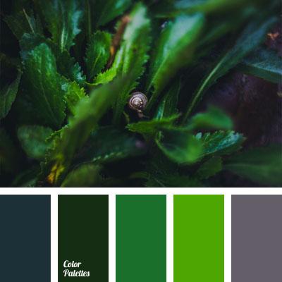 Color Palette 1034