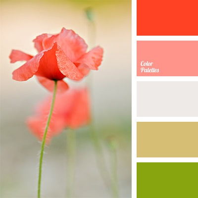 color palette 1091
