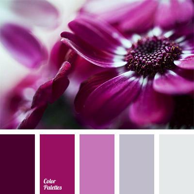 burgundy pink colour color palette ideas