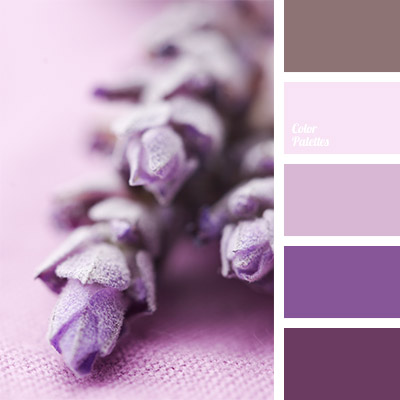 Lavender Color Page 4 Of 5 Color Palette Ideas