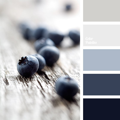 Color of jeans color palette ideas for Blue gray paint palette
