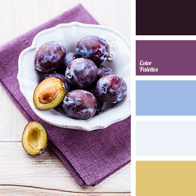 Shades Of Aubergine Colour Color