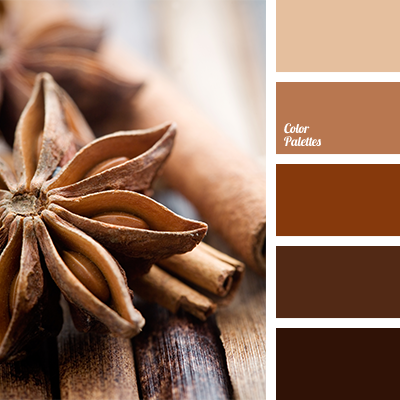 Cinnamon color color palette ideas - Light blue brown color scheme ...