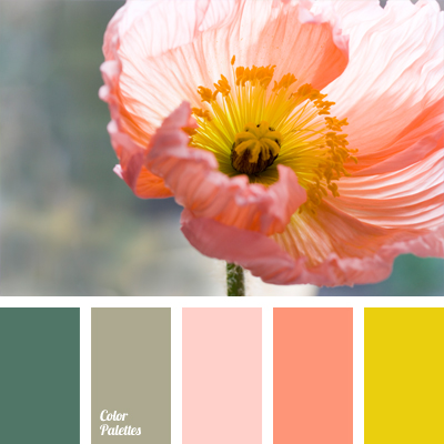 Color Of Spring Flowers Color Palette Ideas