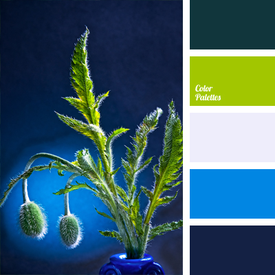 Bright Light Blue Color Palette Ideas