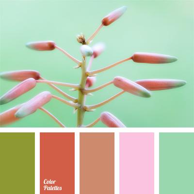 Mint Colour Color Palette Ideas