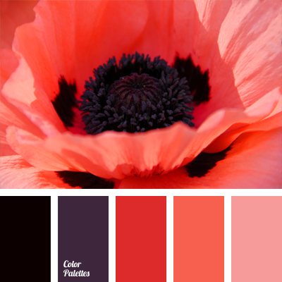 Coral Страница 2 из 6 Color Palette Ideas