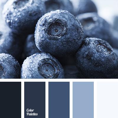 Color Palette 1193 Blueberry Blue