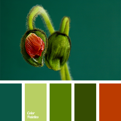 Emerald Green Colour Color Palette Ideas