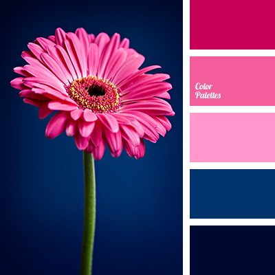 color palette 1322