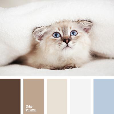 Color Palette #1363 | Color Palette Ideas
