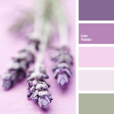 Shades Of Lavender Colour Color Palette Ideas