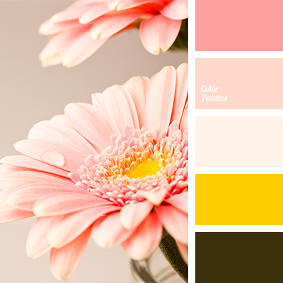 Peach pink colour color palette ideas Good color combination for pink