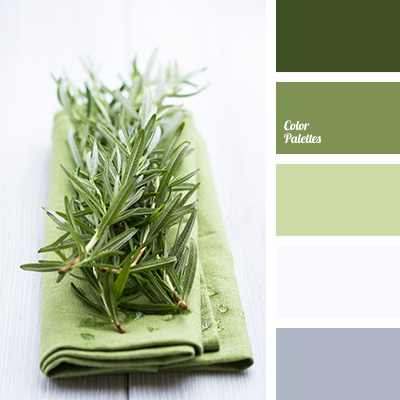 Light Green And Gray Color Palette Ideas