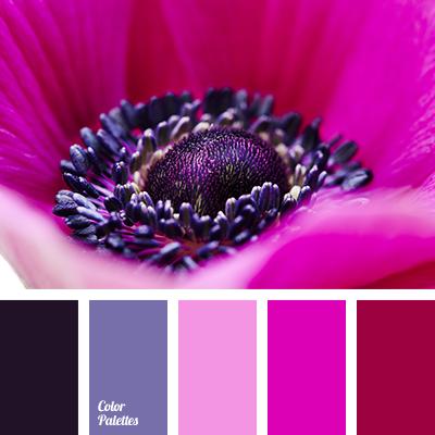 Fuchsia Color Palette Ideas