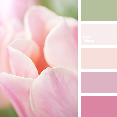 Soft Pink Color Palette Ideas