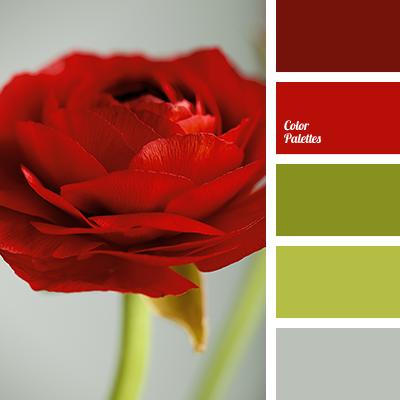 burgundy-red | Color Palette Ideas