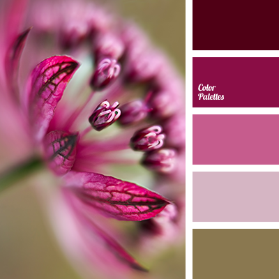 Combination Of Pink And Brown Color Palette Ideas