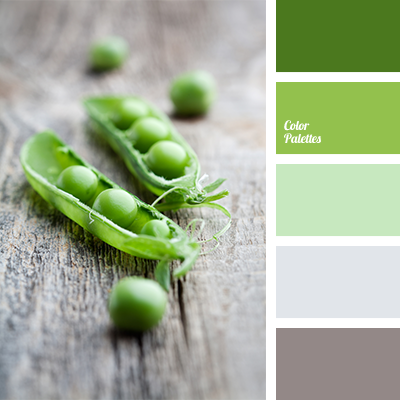 Color Palette 1444
