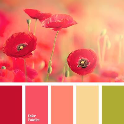 Color Of Poppies Color Palette Ideas