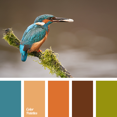 Orange And Turquoise Color Palette Ideas