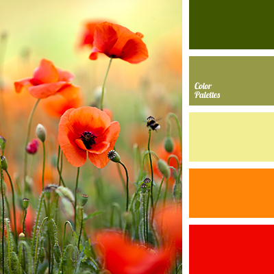 Color Palette 1513