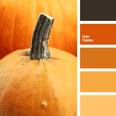 Color Palette #1556