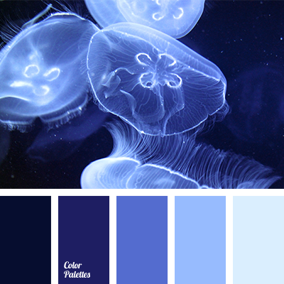 Azure Colour Color Palette Ideas