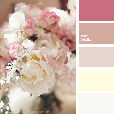 delicate colours for a wedding | Color Palette Ideas