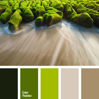 Color Palette 1632