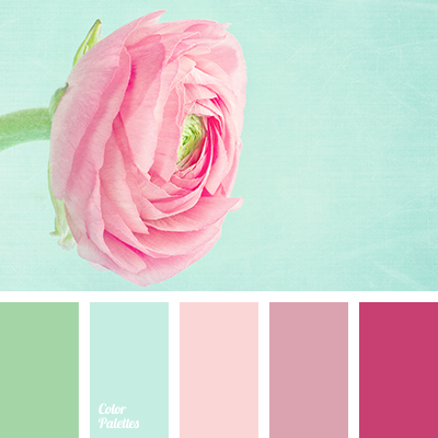 mint and pink | Color Palette Ideas
