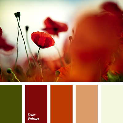 Color Palette 1691 Brick Red
