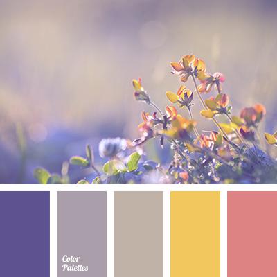 Color Palette 1716