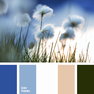 Blue And White Color Palette Ideas