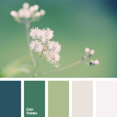 Color Palette 1755