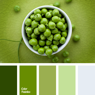 Palette For Design Color Palette Ideas