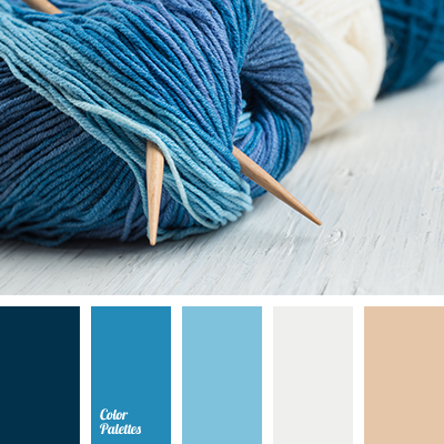 monochrome blue color palette | color palette ideas