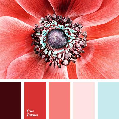 Color Palette 1885 Color Palette Ideas