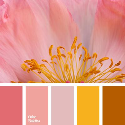 Color Palette 1895 Beige And Pink