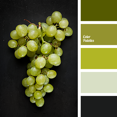 color palette applegreen - Apple Green Color
