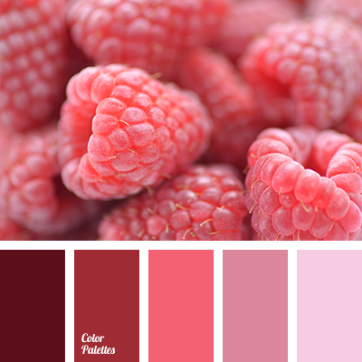 Color palette 1976 color palette ideas Red and pink colour combination