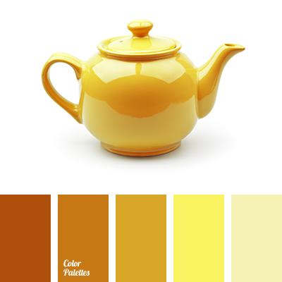 monochrome orange color palette