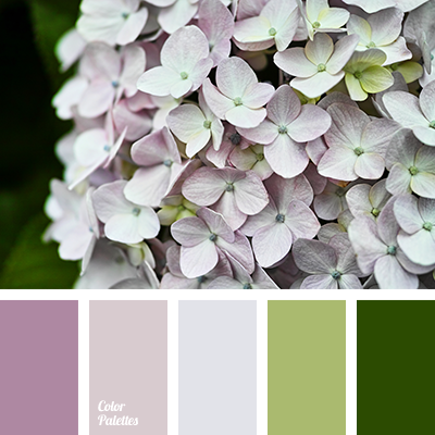 color combination for interior