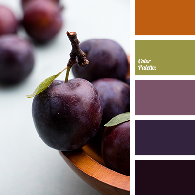 shades of plum color
